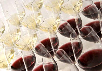 Košt mladých vín Přítluky